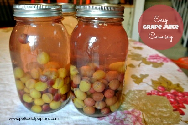 Easy Grape Juice Canning