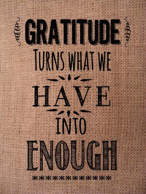 Gratitude-copy-500x666
