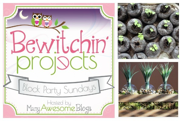 Bewitchin Project Block Party #23