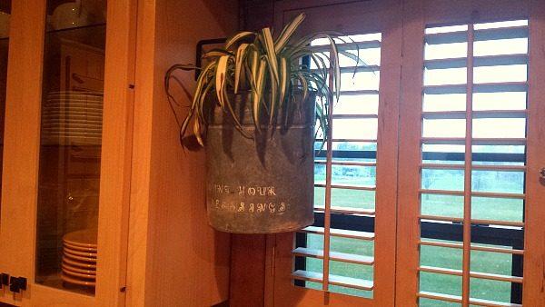 Old Bucket Planter DIY